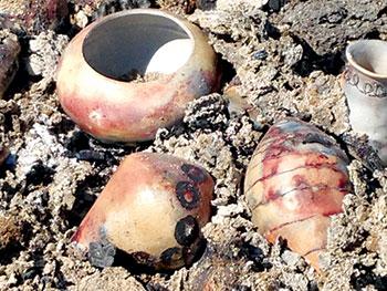 Pots emerging